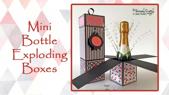 Mini Bottle Exploding Boxes by DT Janet