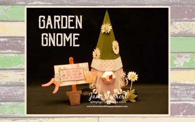 Garden Gnome by DT Jana