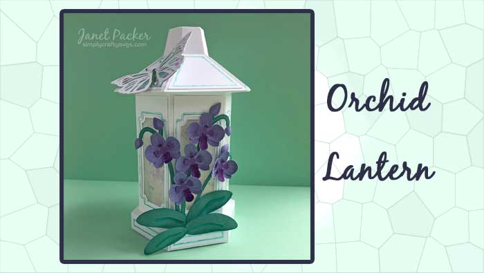 Orchid Lantern by DT Janet