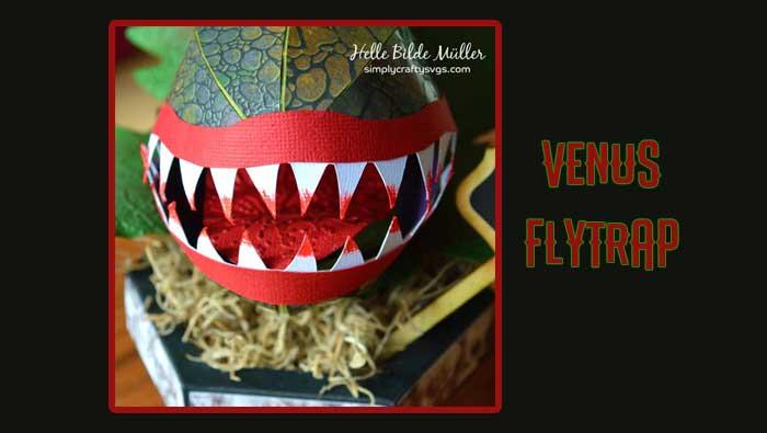 Venus Flytrap by Helle