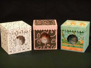 Bath Bomb Boxes by Jana