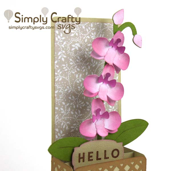 Orchid Box Card SVG File