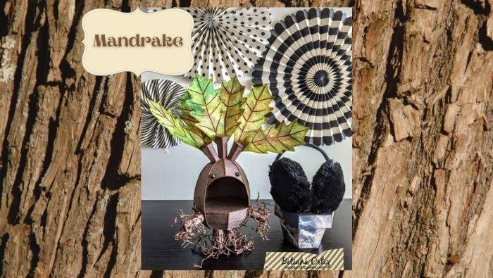 Mandrake by Betiana